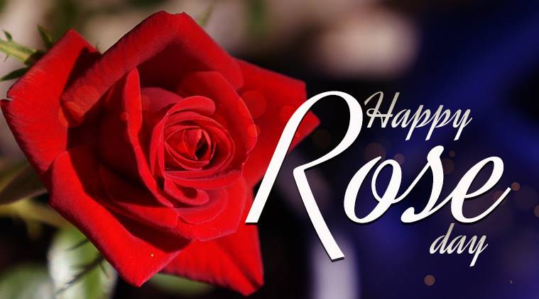 Rose Day date