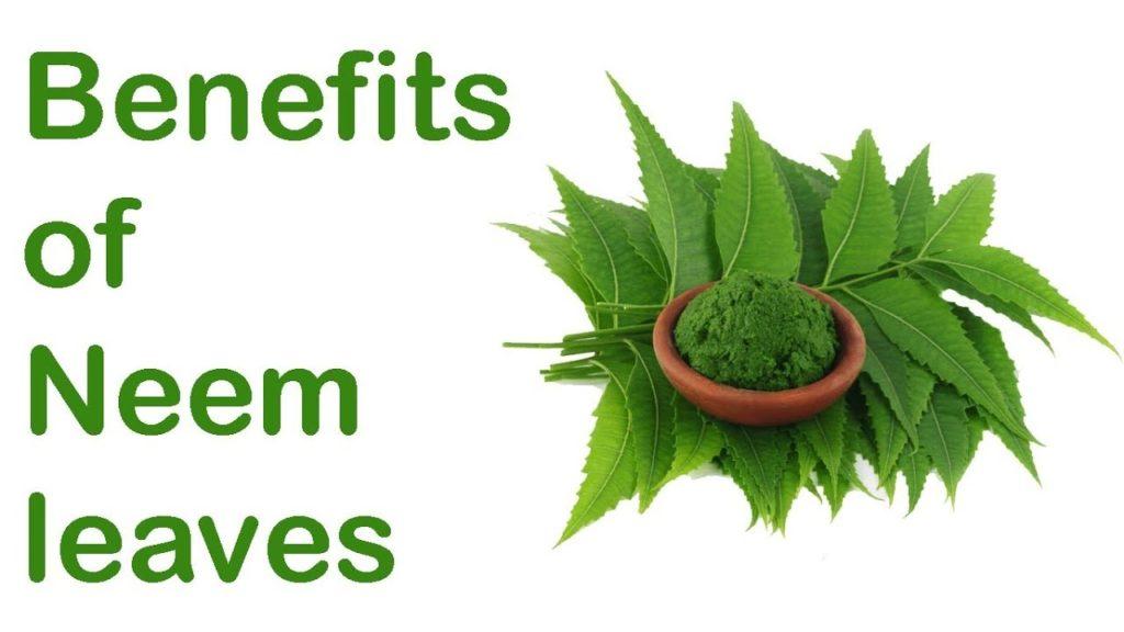 Neem benefit